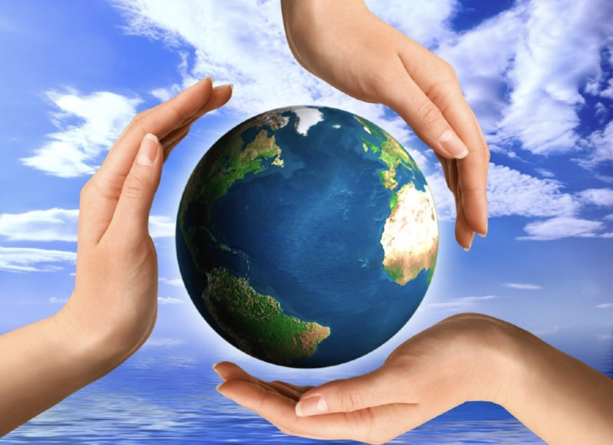 картинки как я спасу мир пластиковых