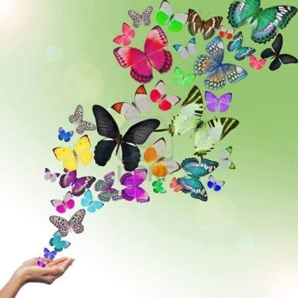 Открытка с бабочками вылетающими, онлайн открытку самим