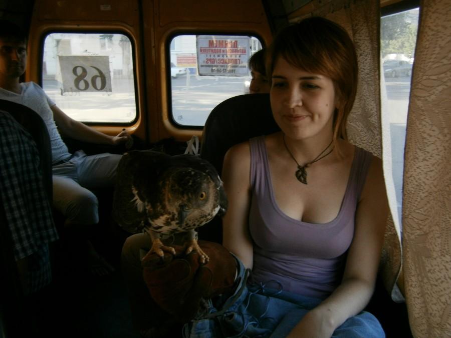 с дамой в автобусе - 2
