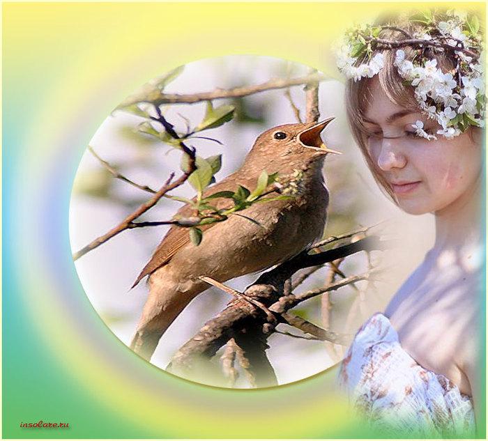 Открытки для девушек птички, праздником