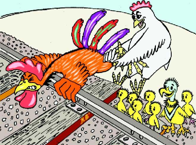 Днем рождения, прикольные картинки про петуха и курицу