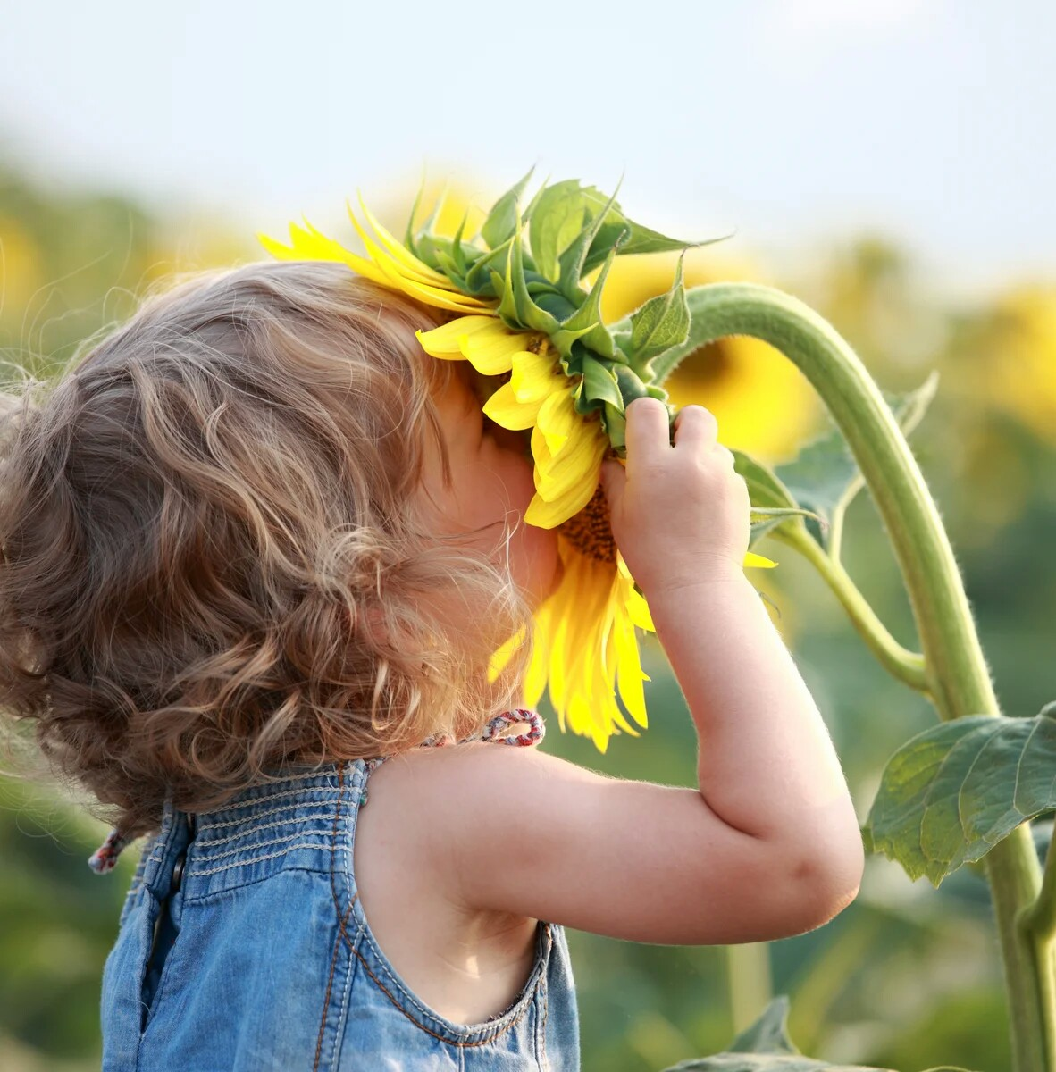 Днем, прикольные картинки радость счастье позитив
