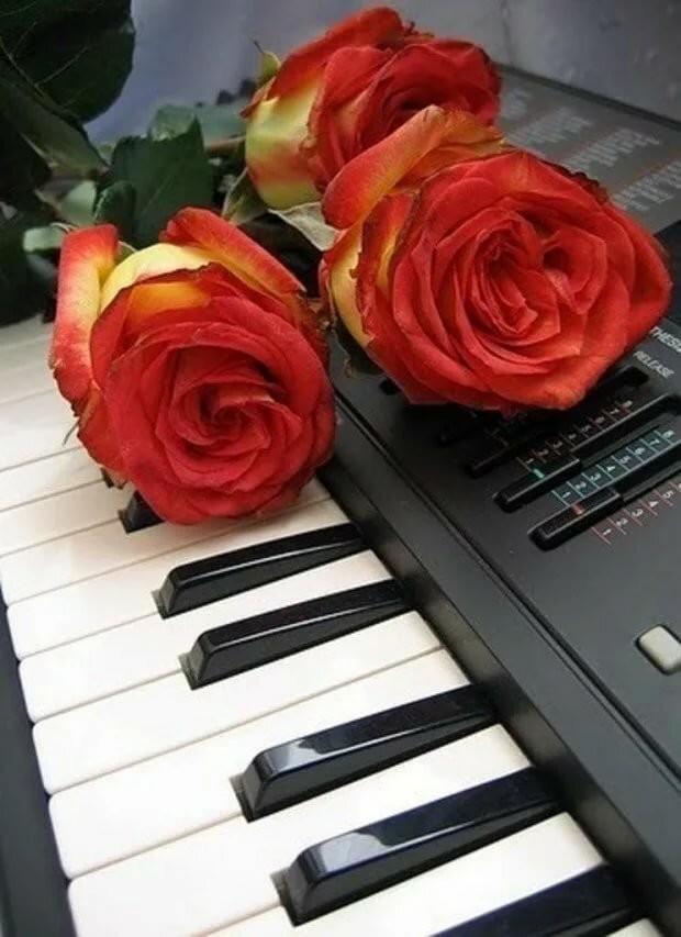 Днем, картинка с клавишами и цветами