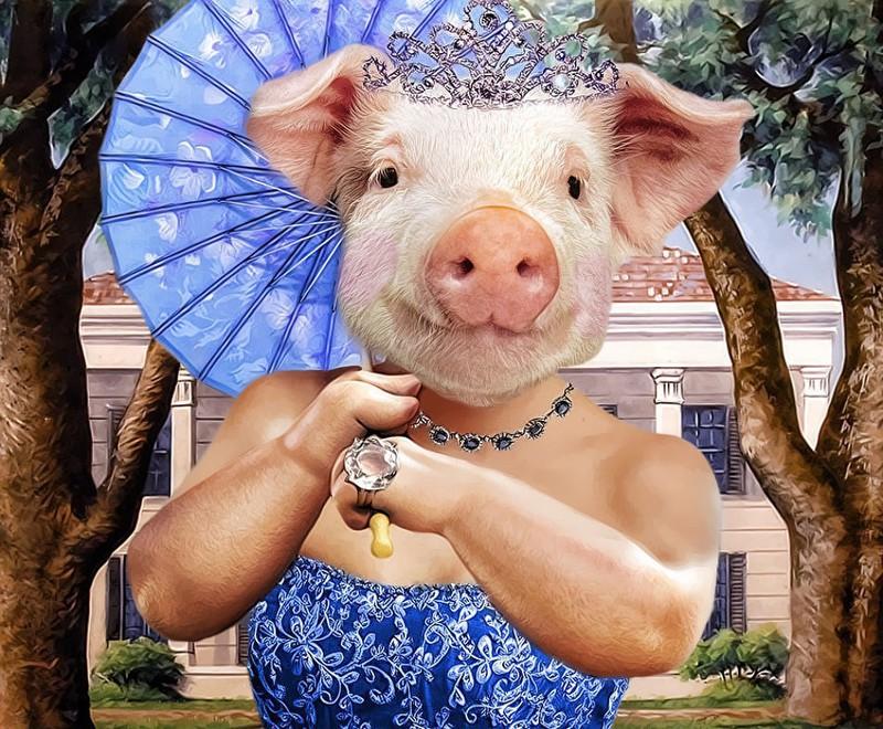 Прикольные картинки со свиньями с новым