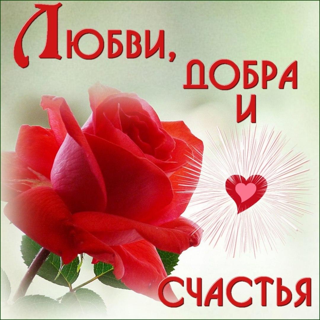 Открытка счастья любви удачи