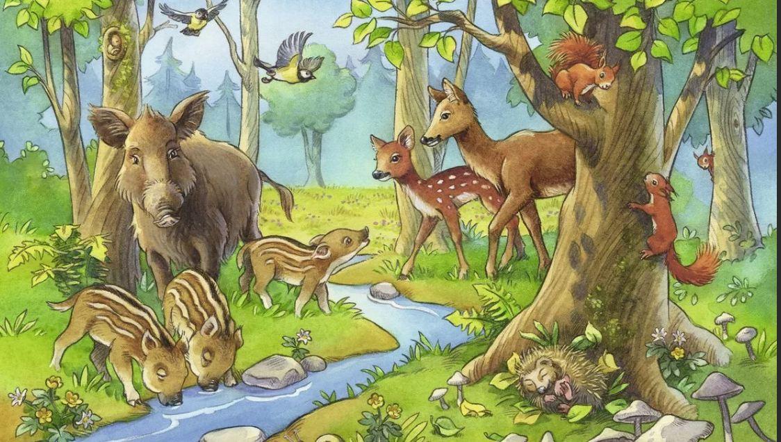Картинка животные в лесу для детей, моря