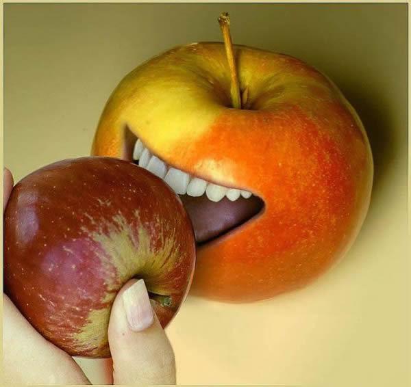 Яблоки смешная картинка, портмоне для прав