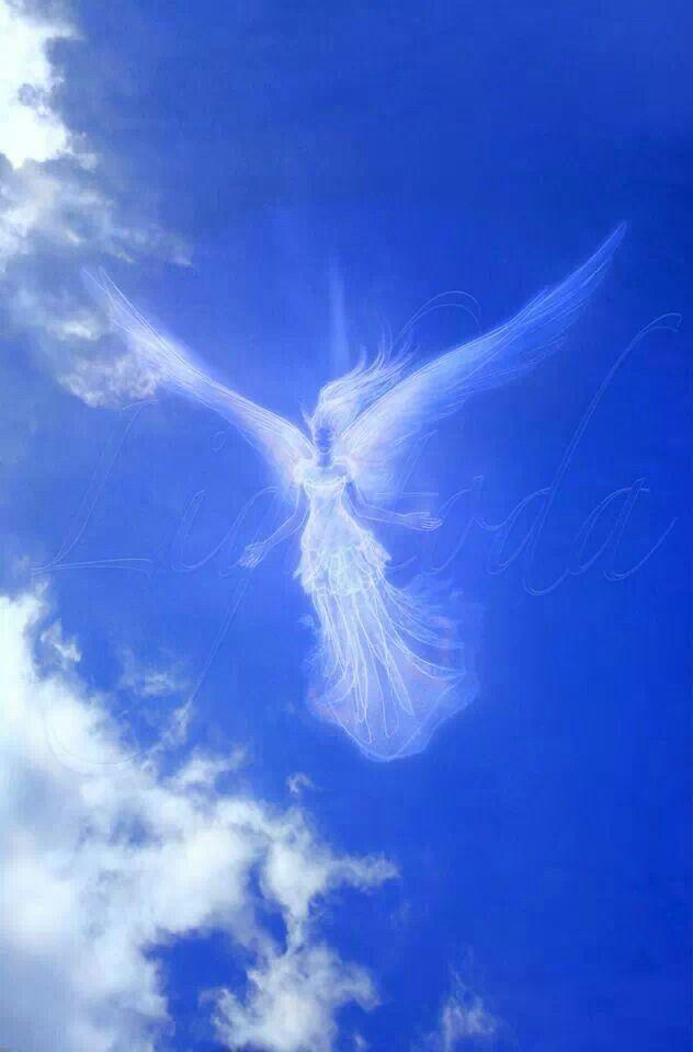 Картинки крылья в небе
