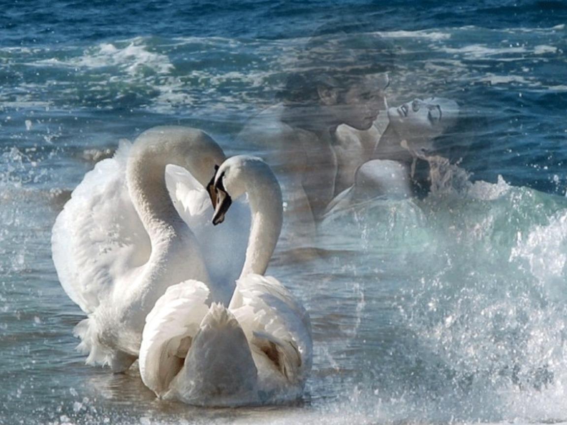 Открытки море любовь