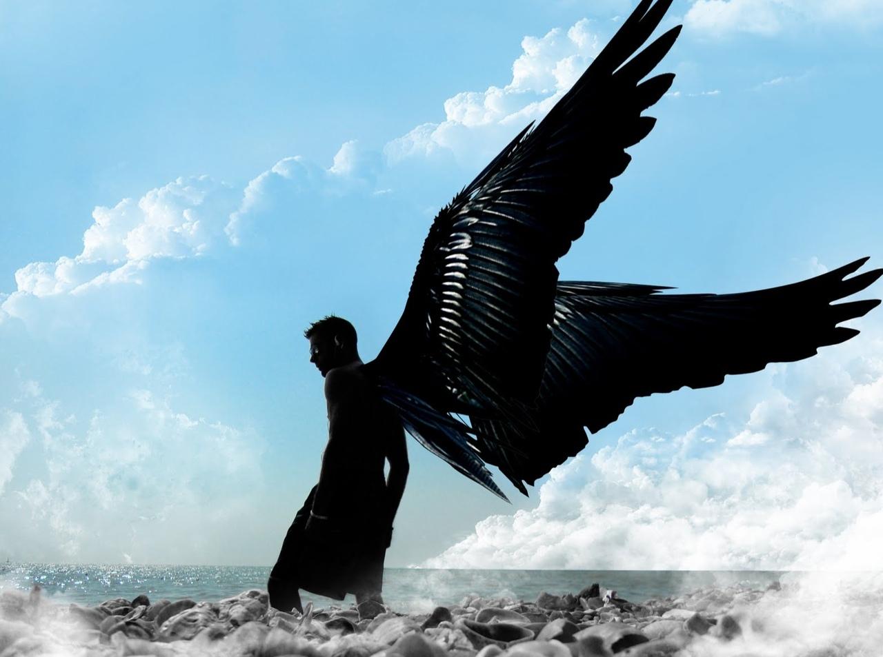 Люди с черными крыльями картинки