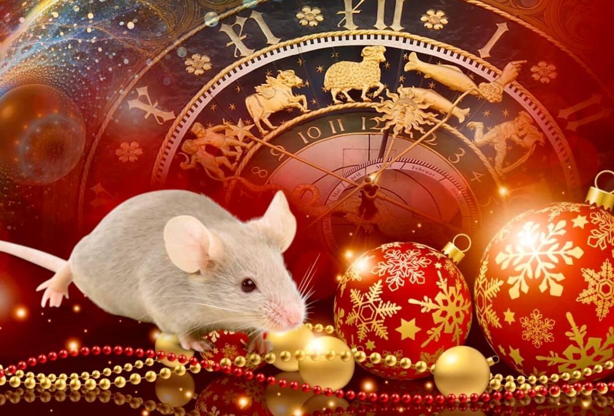 новогодние обои на рабочий стол год мыши