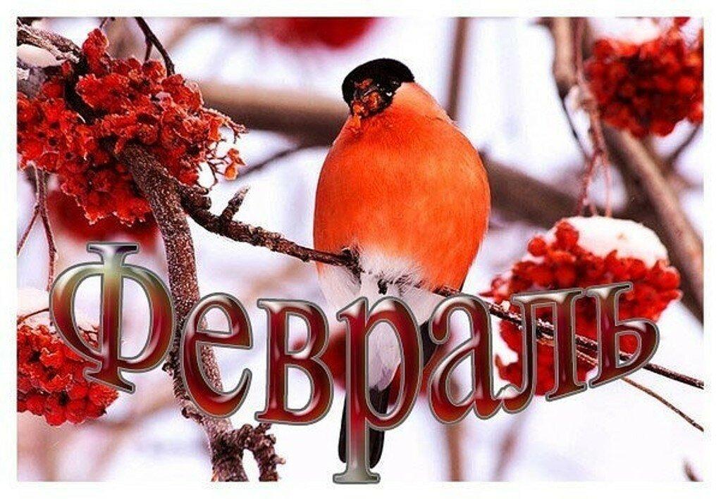картинки прощай январь привет февраль веранды