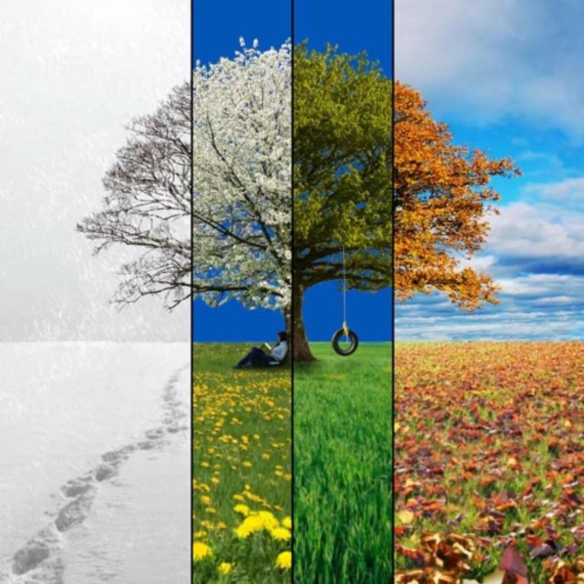 В картинках про времена года