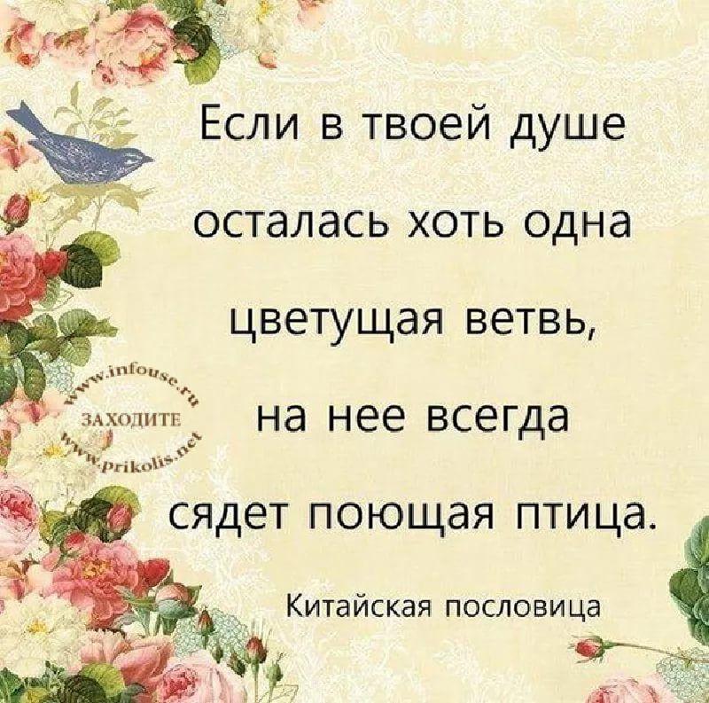 Красота души стихи