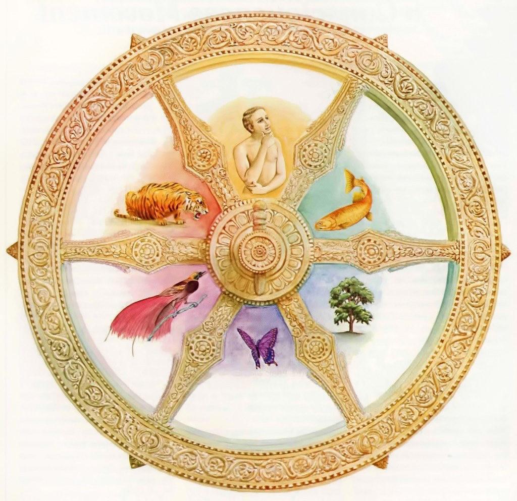 колесо сансары картинки сама служба