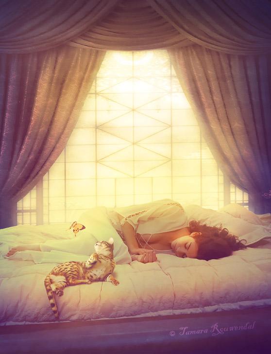 Картинки ванильные сны