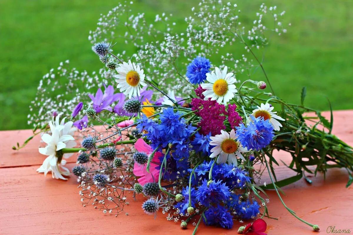 Открытки с букетами полевых цветов